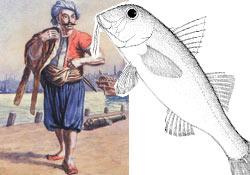 Karadenizde balık avcılığı tarihi