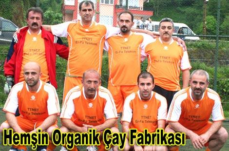 hemsinorganik2011.jpg