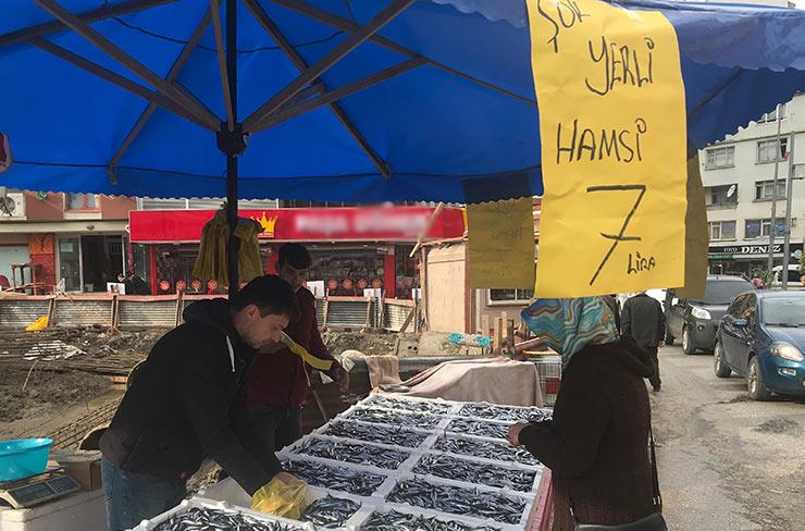 hams-003.jpg