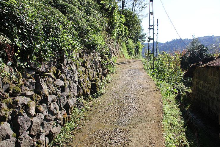 yol1-043.jpg