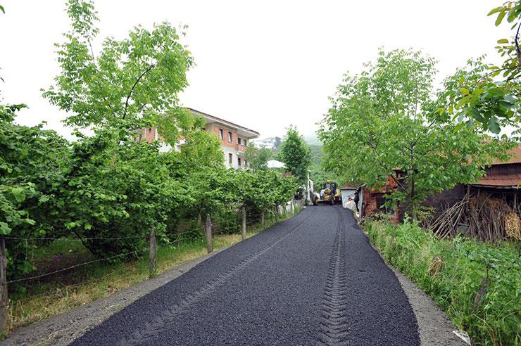 yol2-036.jpg